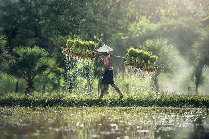 Natural Sights in Thailand