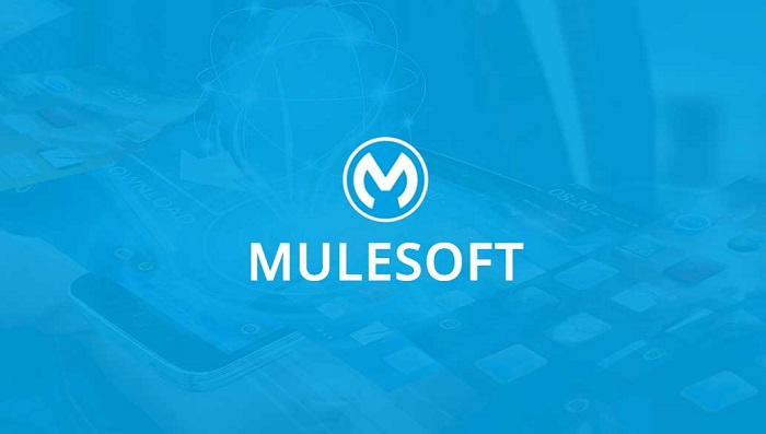 Mulesoft Consultation Services